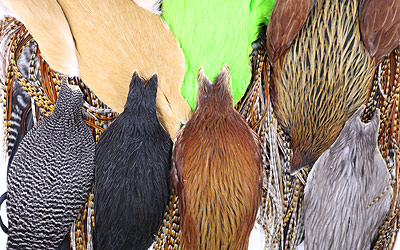 Whiting Farms Hen Capes