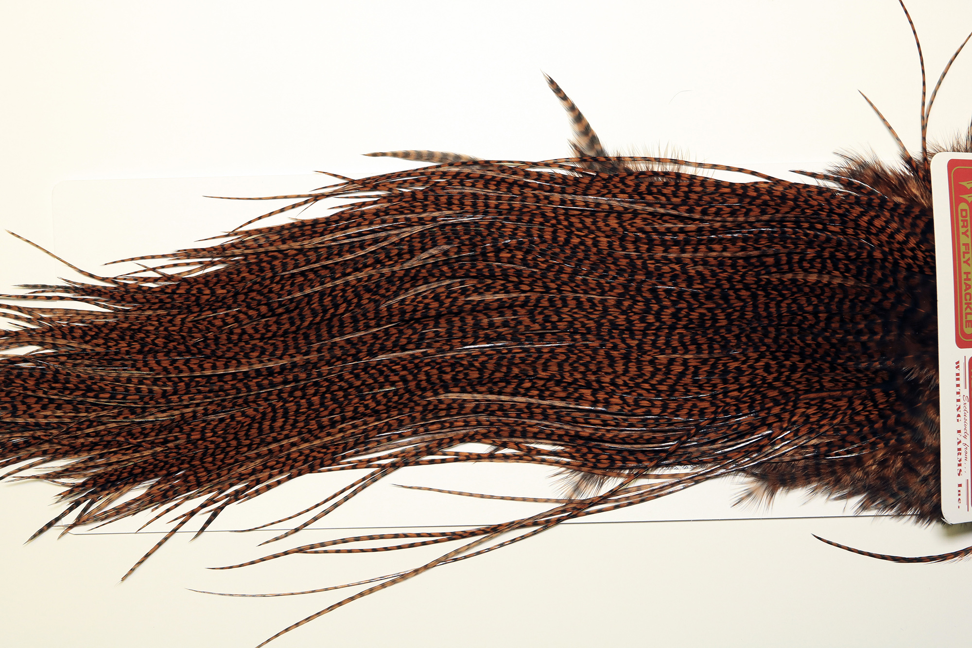 Whiting Farms Grizzly dyed Brown Capes and Saddles